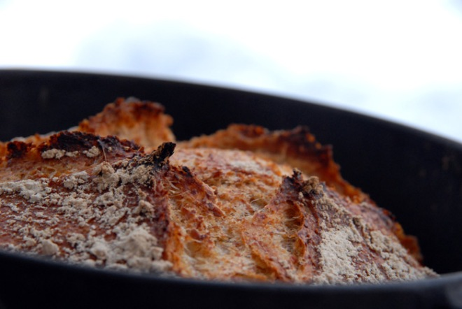 Hvete gir godt glutennett som gir luftig heving. Lag et kryss i brødet før steking og brødet får en vakker skorpe som åpner seg som en blomst under steking. Foto: Lise von Krogh