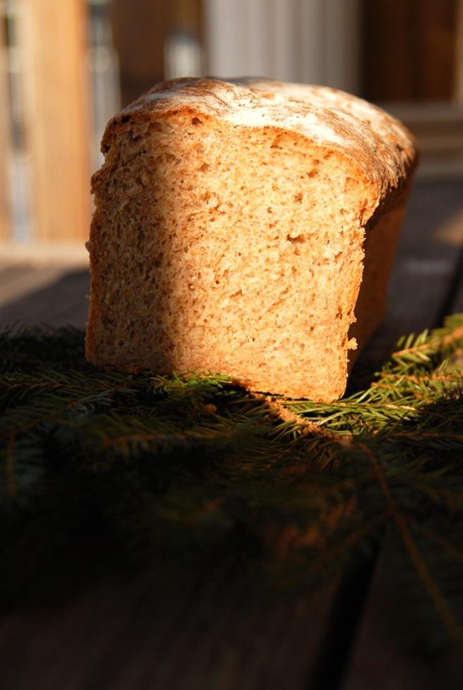 Myk og godt brød. Foto: Lise von Krogh.