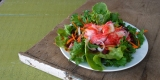 sommersalat-topfeatured