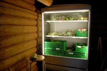 Landsbyens nåværende grønnsaksutsalg. Foto: Lise von Krogh