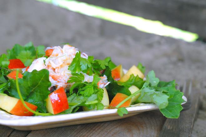 Salat fra sjø og land. Foto: Lise von Krogh.