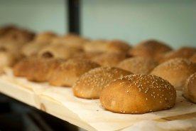 Økologiske hamburgerbrød. Foto: Lise von Krogh.