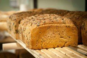 Nybakte økologiske brød. Foto: Lise von Krogh.