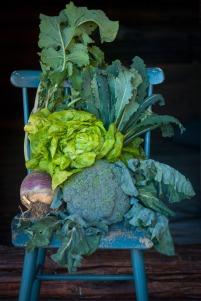 Årets grønnsaker. © Foto: Lise von Krogh.
