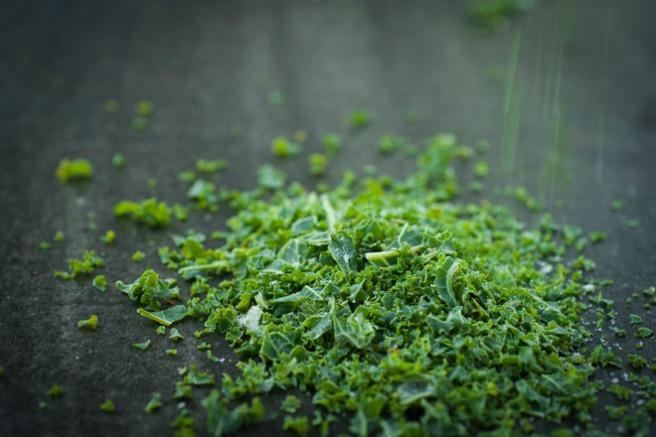 Frossent grønnkåldryss. Foto: Lise von Krogh.