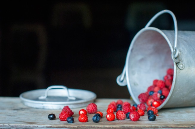 Blåbær, markjordbær og bringebær. Foto: Lise von Krogh ©