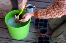 Vask alltid brukte potter før du bruker dem på nytt. Foto: Lise von Krogh ©