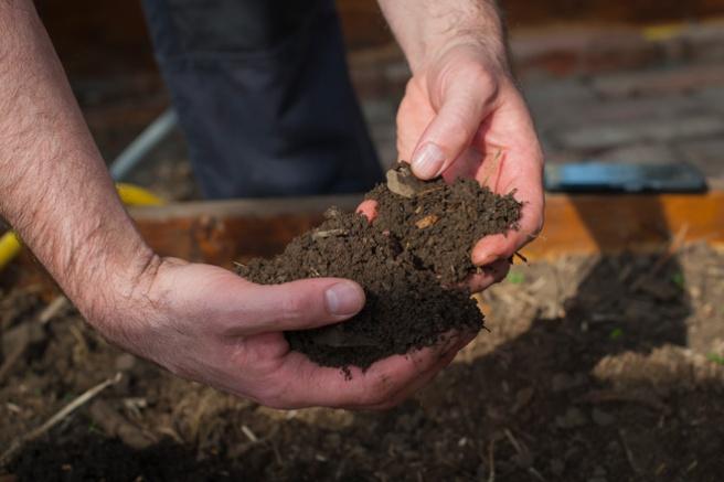 En god jordstruktur ser du på jord danner små klumper (aggregater). Foto: Lise von Krogh ©